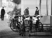 biciklik - Orosz Dávid